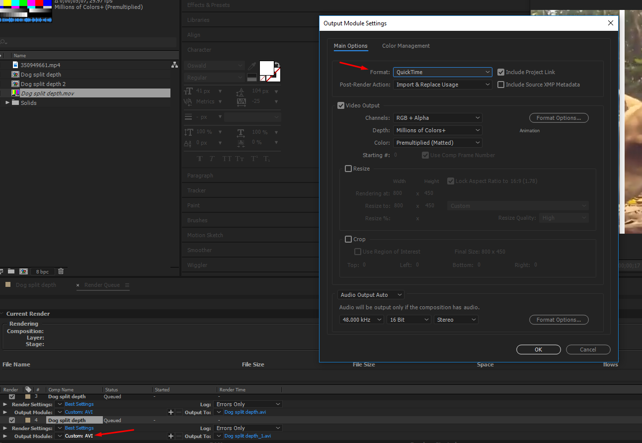 Choose the format in the output section of the render queue