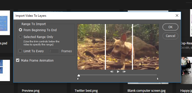 Edit the clip with the Range to Import option