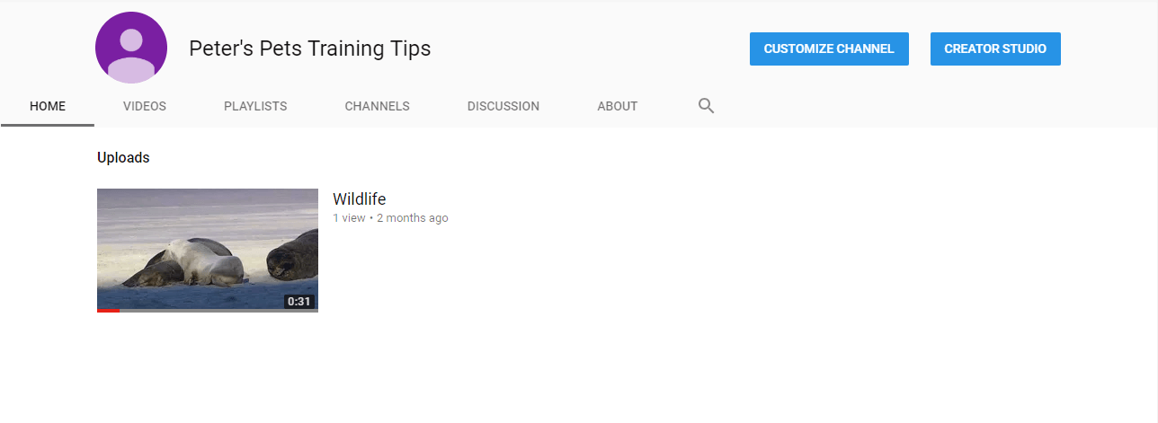 A YouTube channel main page.