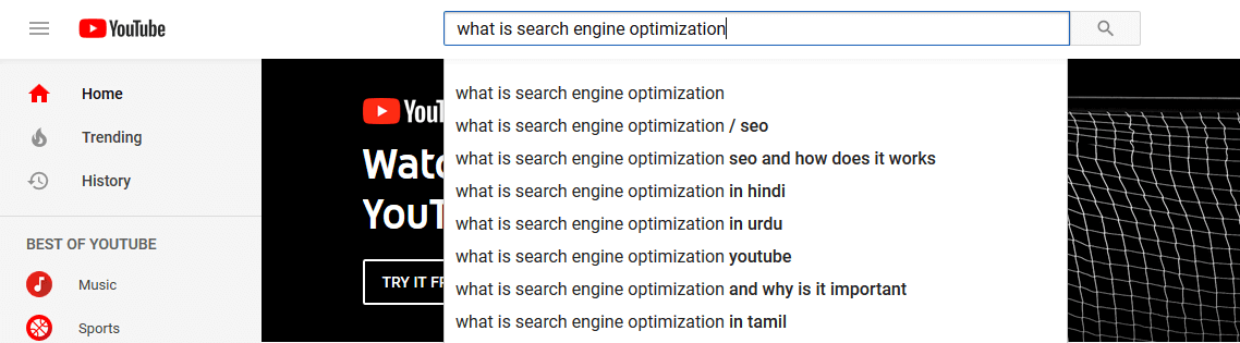 "YouTube SEO: A YouTube search for ""search engine optimization""."