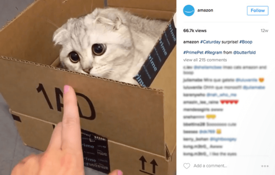 An Instagram post by Amazon.